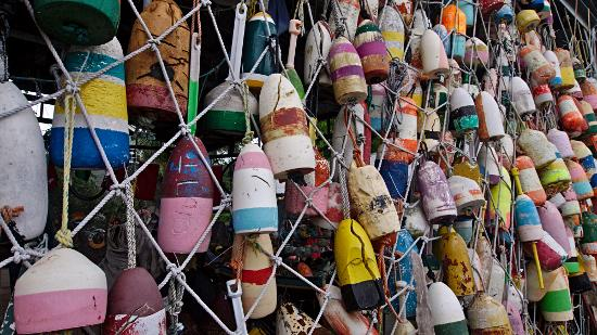 Colorful buoys, Apalachicola, FL