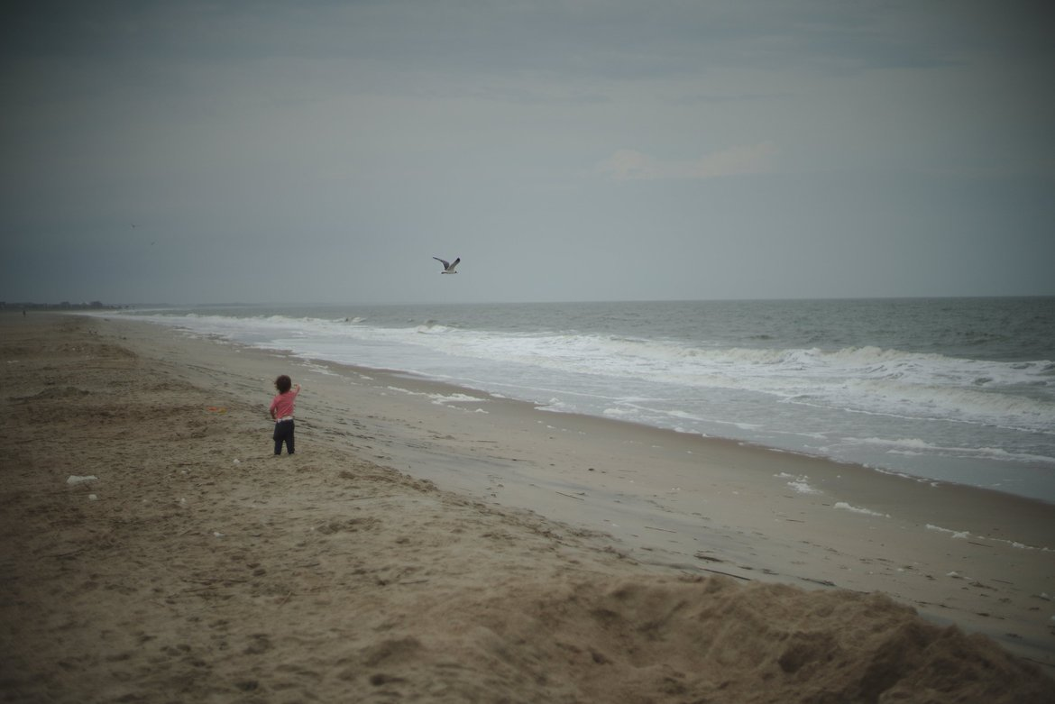 Edisto beach, storm chasing birds photographed by luxagraf