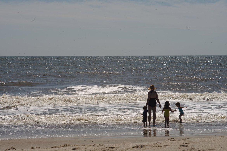 Edisto beach sunny photographed by luxagraf