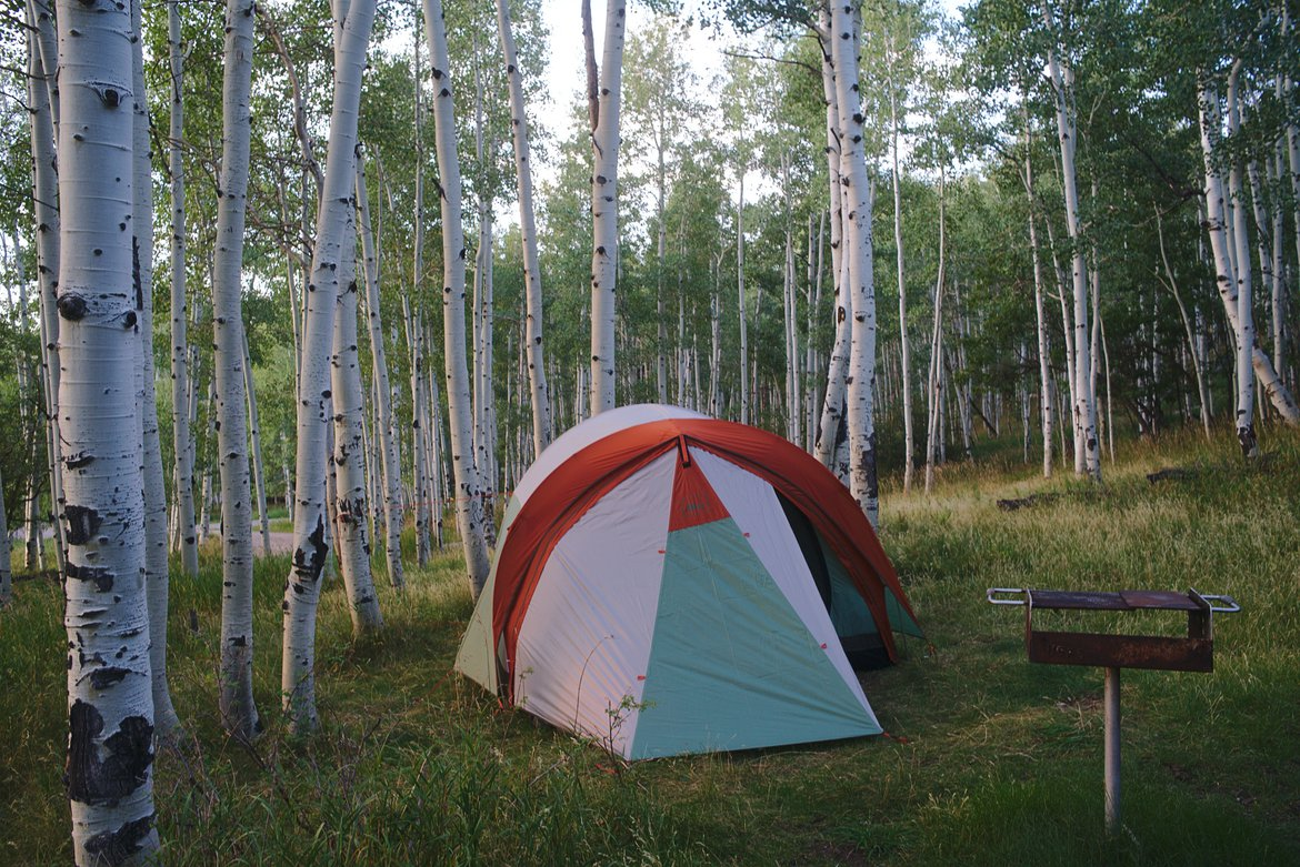 camping in aspen grove photographed by luxagraf