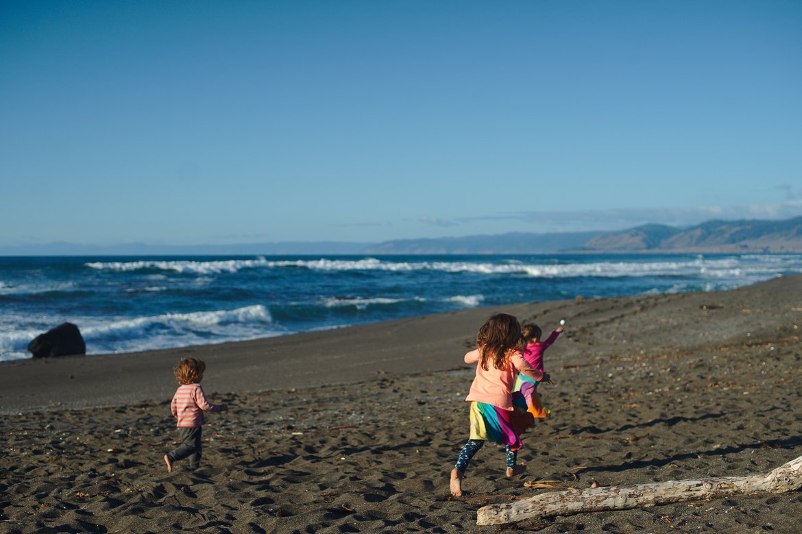beach, fort bragg, ca photographed by luxagraf