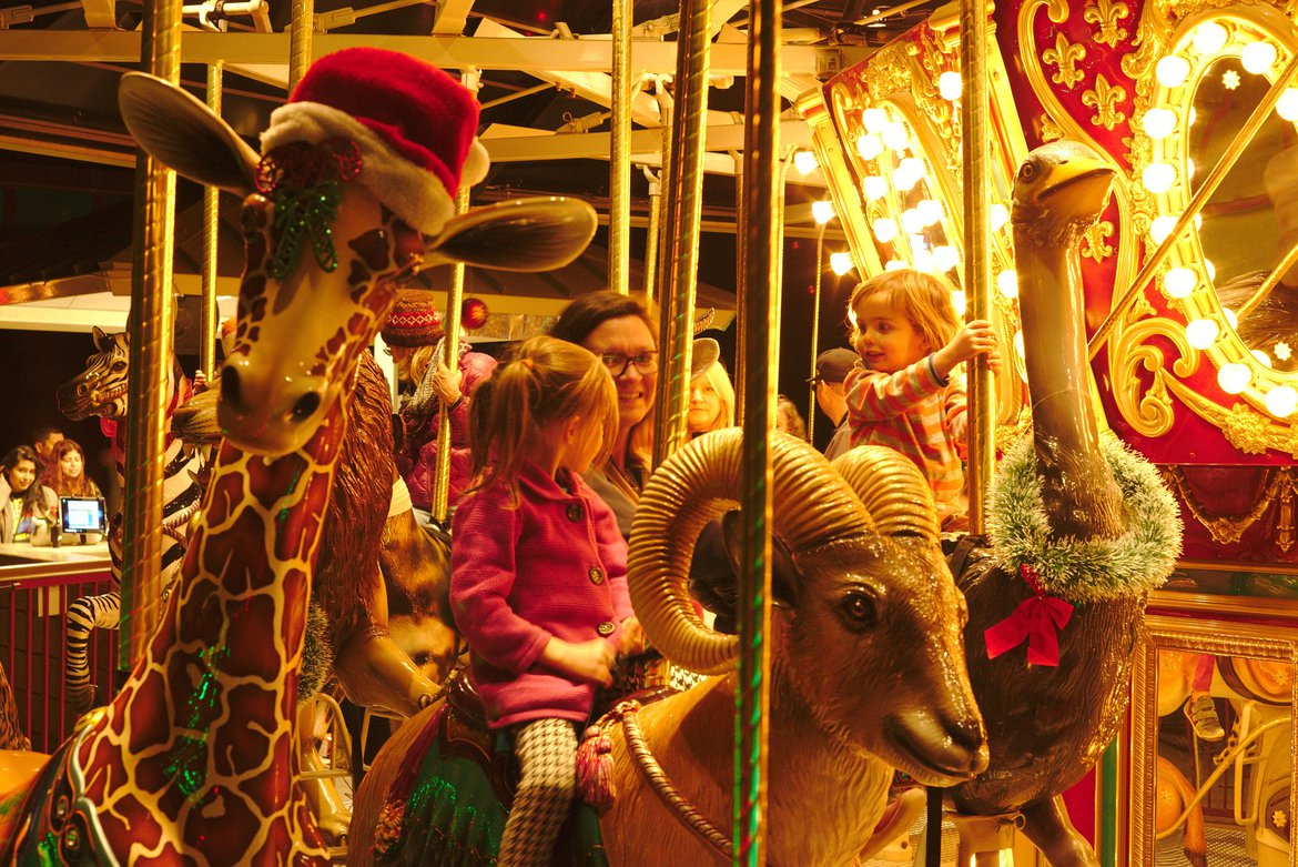 Christmas at the zoo photographed by luxagraf