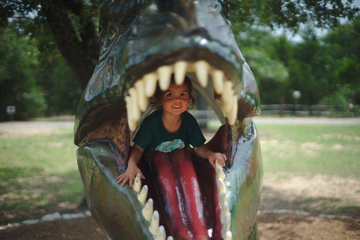 trex mouth, dinosaur park, bastrop, tx photographed by luxagraf