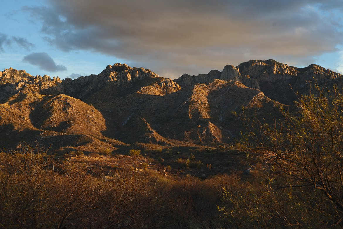 catalina foothills, catalina state park, tucson photographed by luxagraf