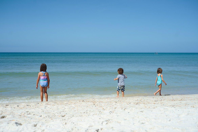 St Joseph State Parkl, Cape San Blas, FL photographed by luxagraf