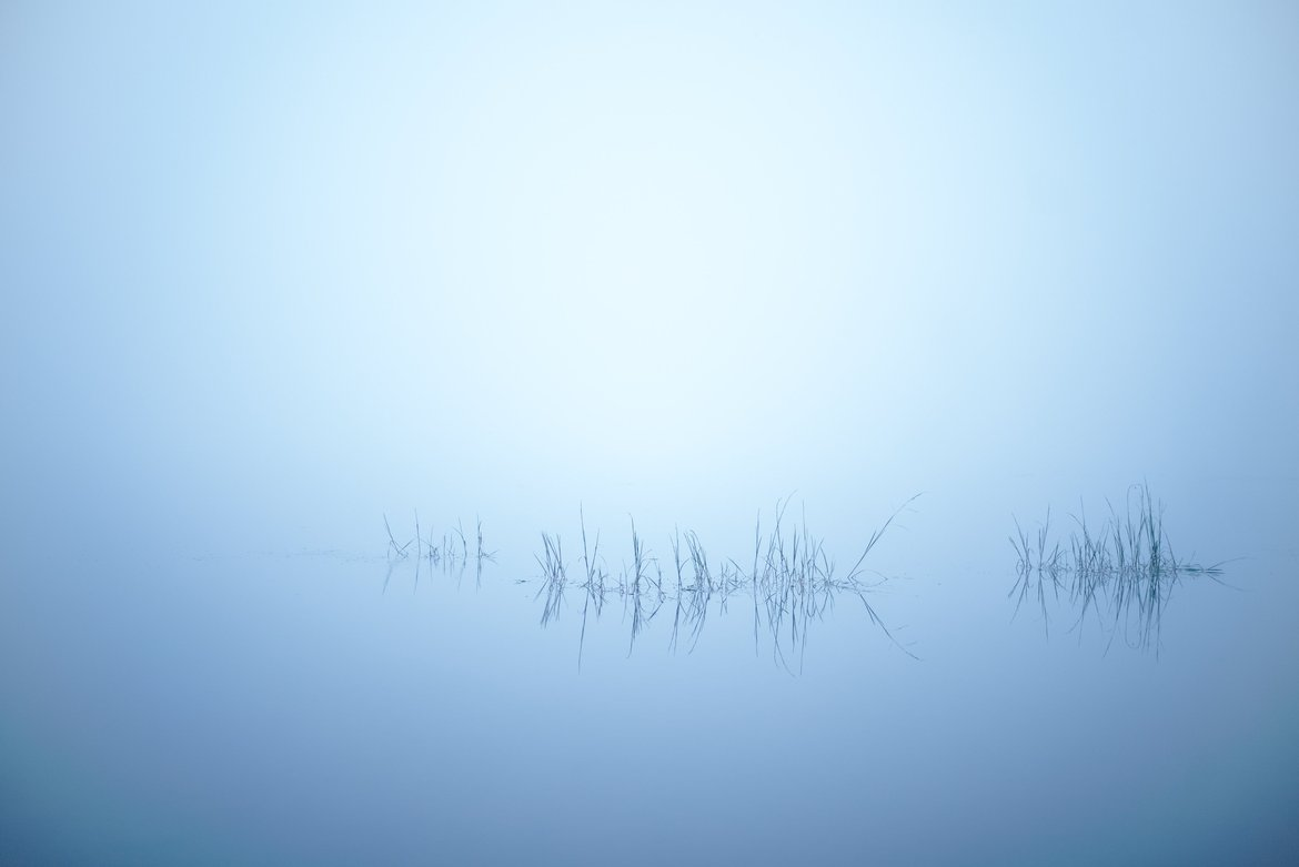 fog, Andrus Lake, MI photographed by luxagraf