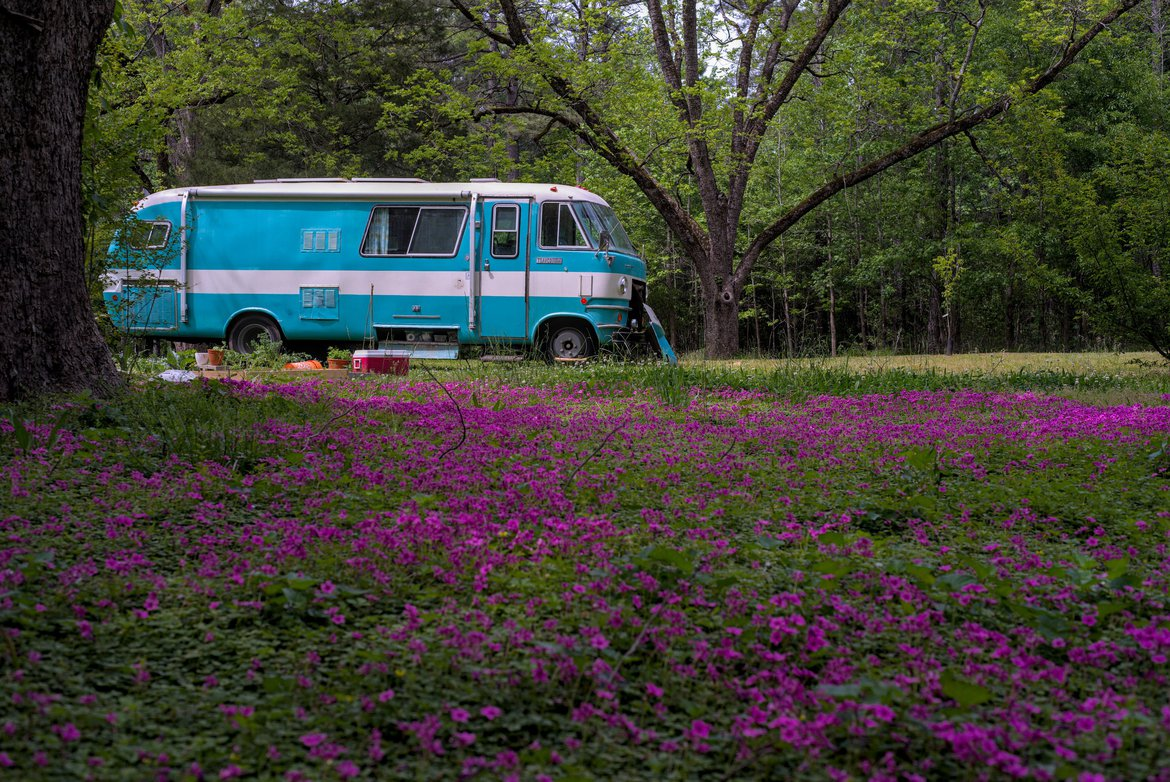 Travco and field of flowers photographed by luxagraf