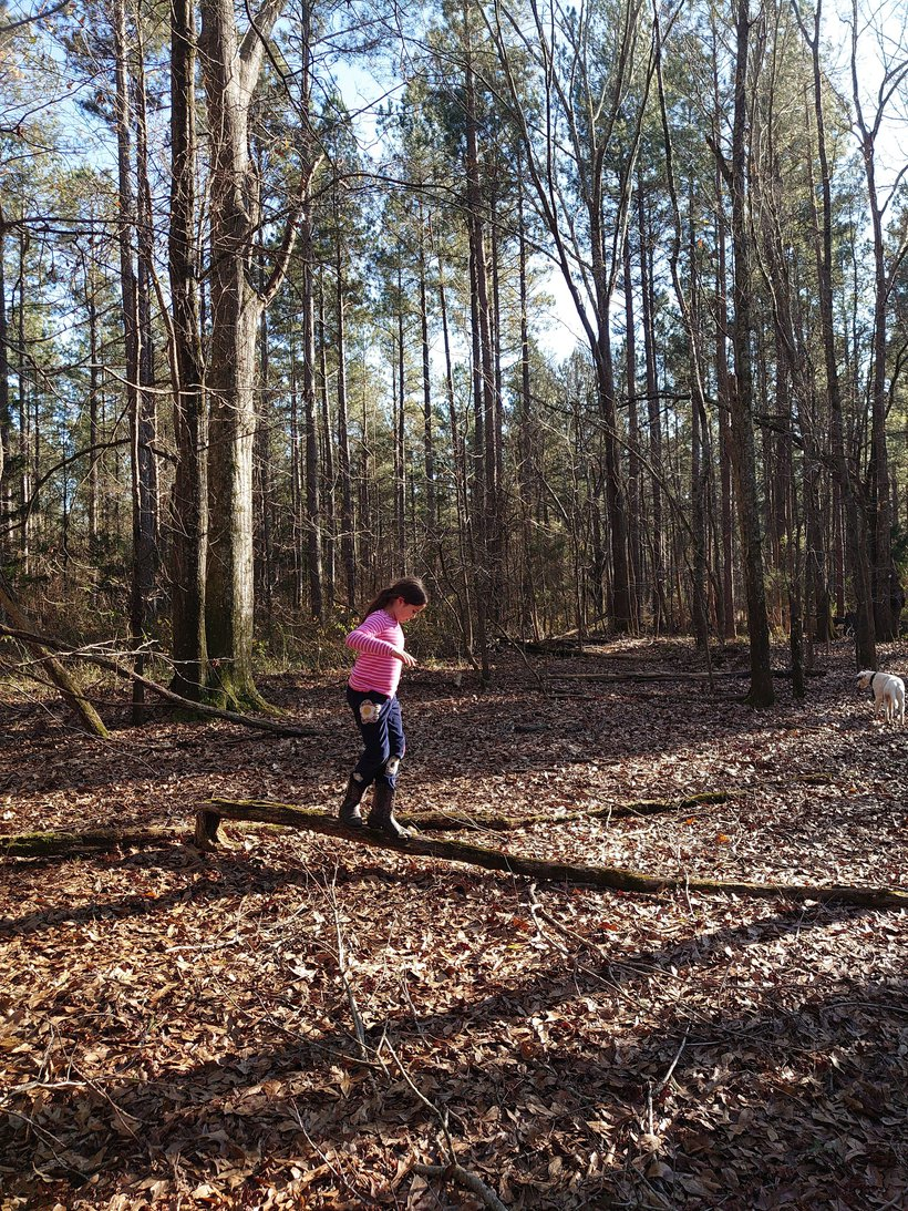 girl using a fallen tree as a balance beam photographed by luxagraf